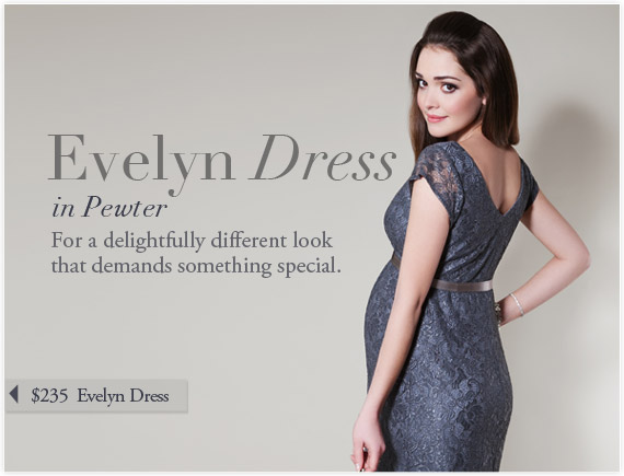 Evelyn Dress (Pewter) by Tiffany Rose