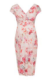 Bardot Maternity Shift Dress English Rose