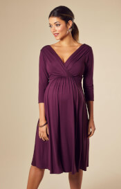 Willow Maternity Dress Short Claret