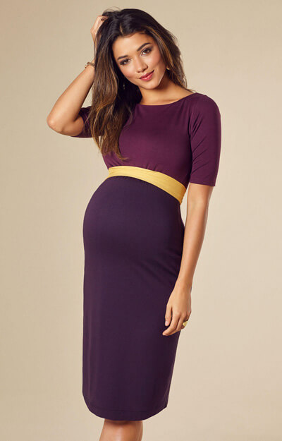 Anna Shift Maternity Dress Imperial