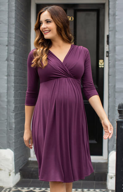 Willow Maternity Dress Short Claret by Tiffany Rose
